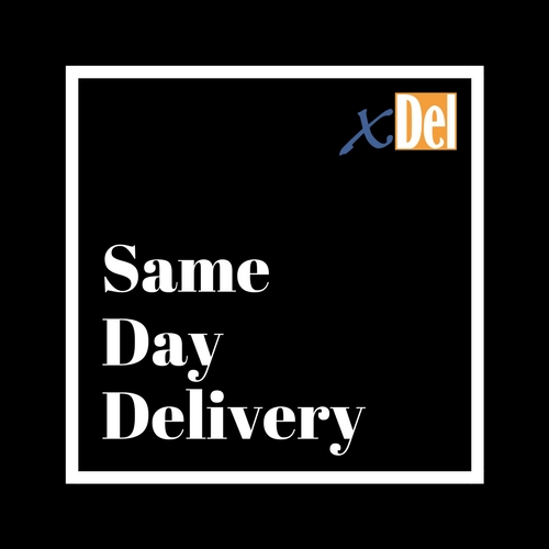 same day courier singapore